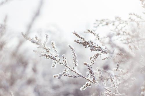 Carport winterfest machen